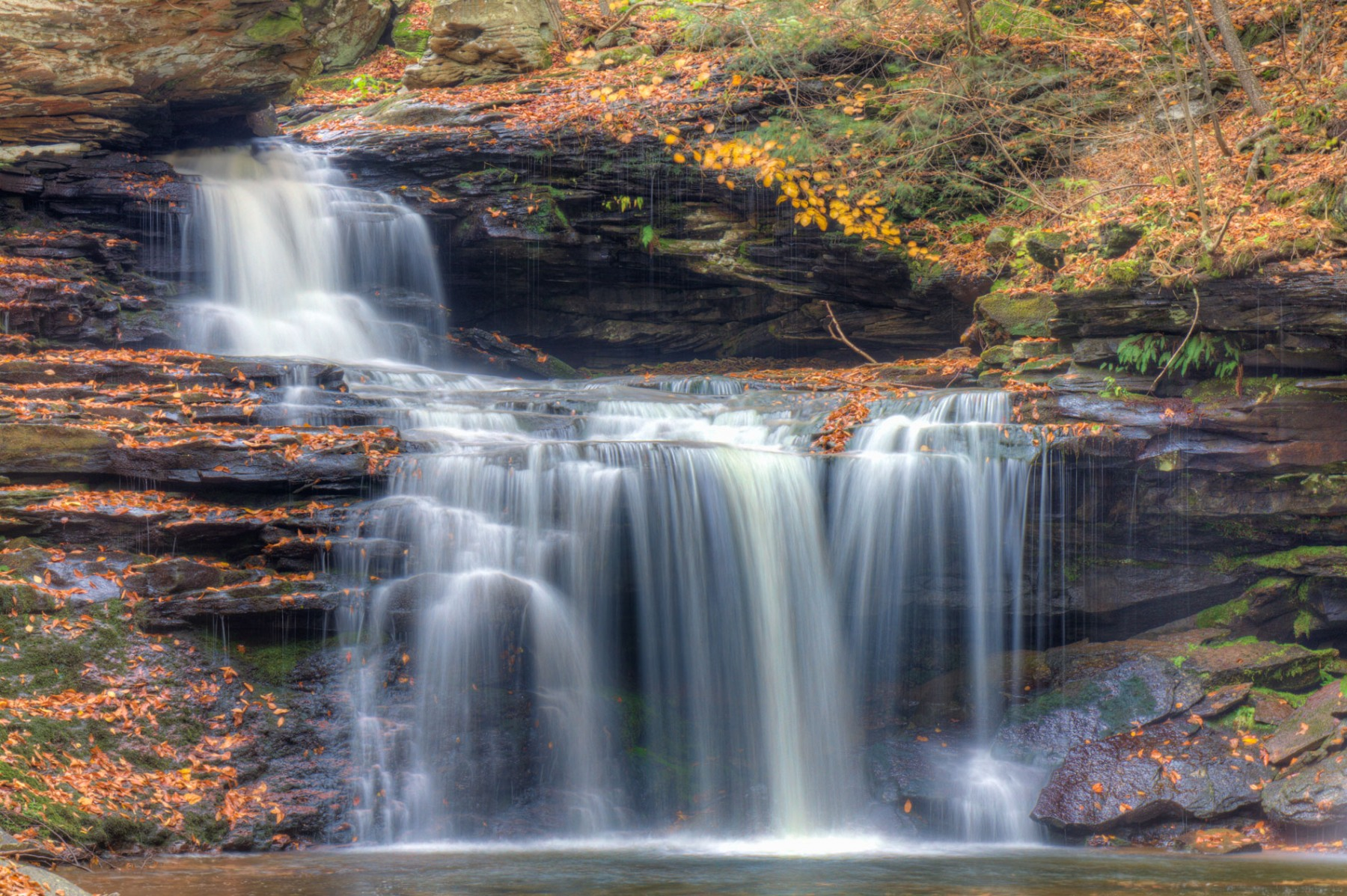 20141022_Ricketts_Glen-310_1_2_3_4_5_6_tonemapped_BFRicketts_web